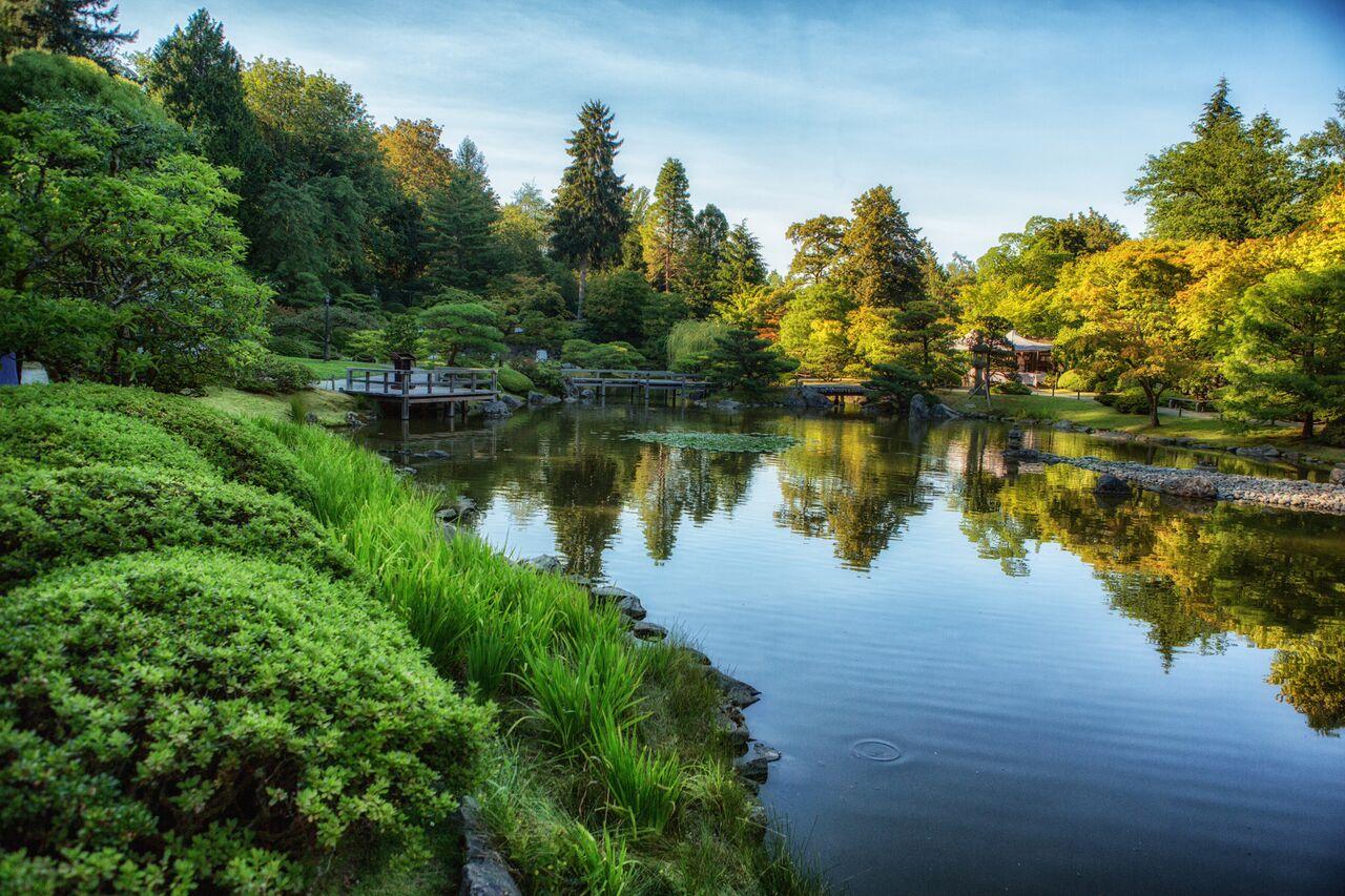 The summertime Japanese Garden.
