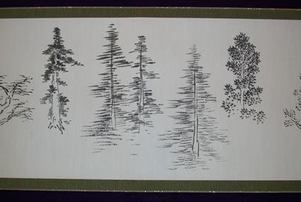 Sketches of trees in the Washington Park Arboretum. Photo: University of Washington.