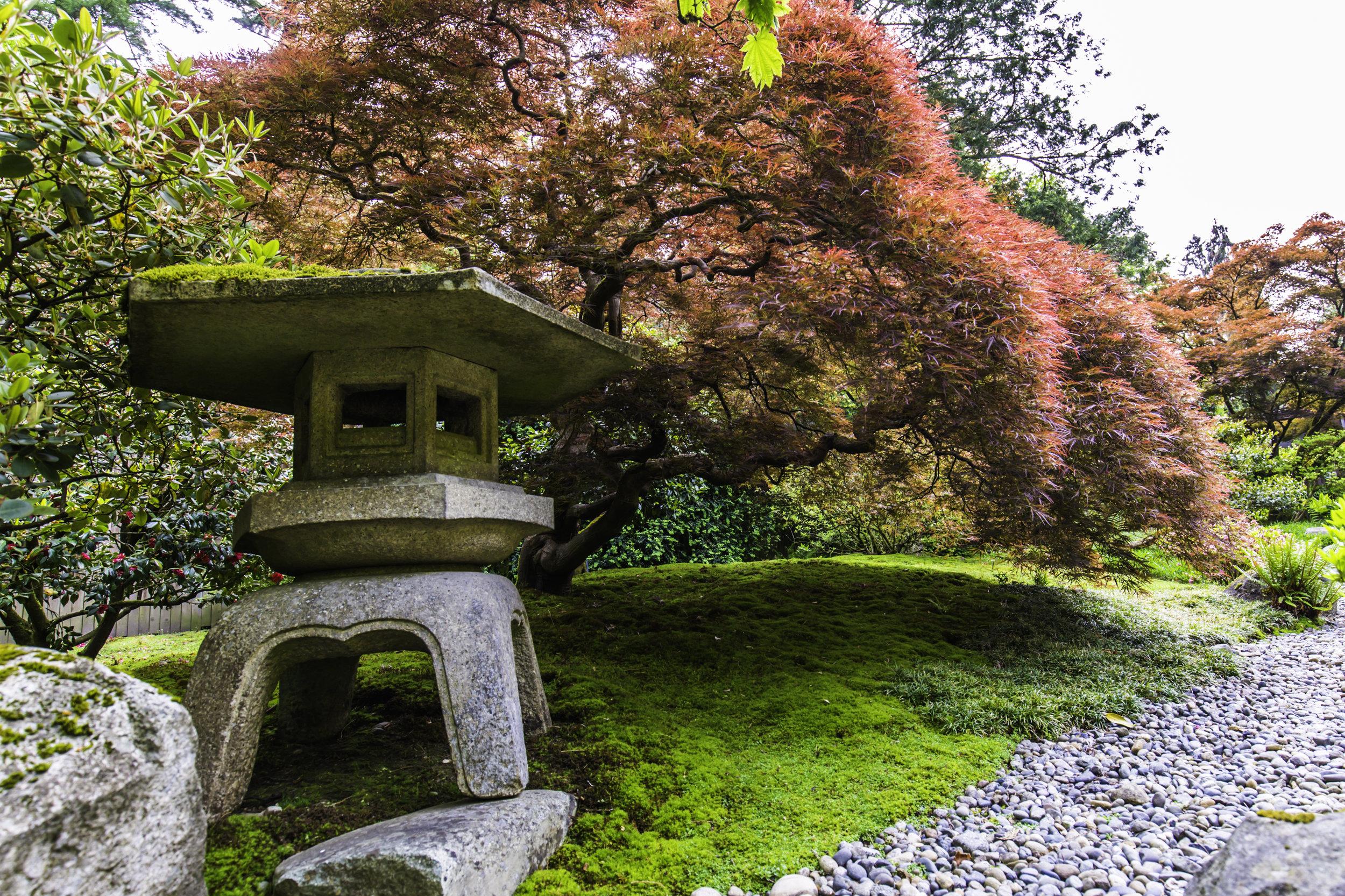 September Lantern Hours Seattle Japanese Garden