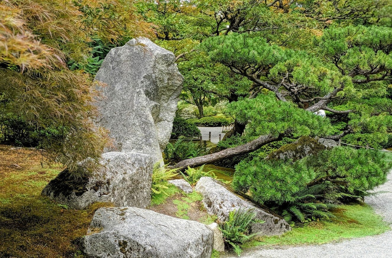 A very large, nearly vertical stone – a powerful focal point as we enter the Seattle Japanese Garden. (photo: Corinne Kennedy)