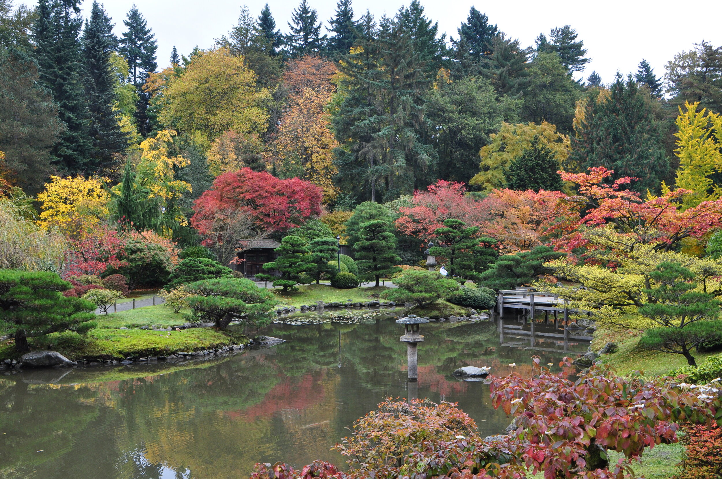 The Seattle Japanese Garden is a stroll garden, with a central pond and a gravel path that winds around it. (photo: 2011, Creative Commons Attribution-Share Alike 2.0 Generic license)