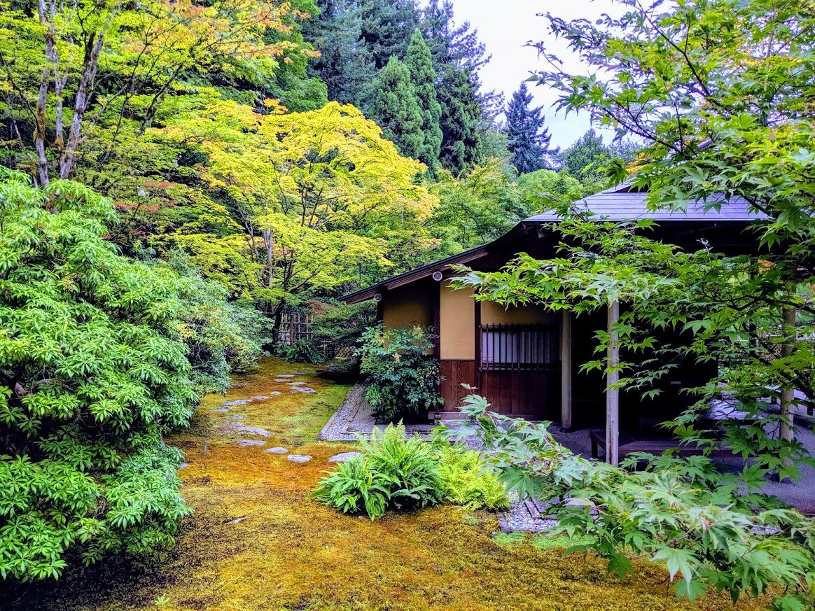 The teahouse garden ( roji ), where stepping-stones wind through both inner and outer garden areas. (photo: Corinne Kennedy)