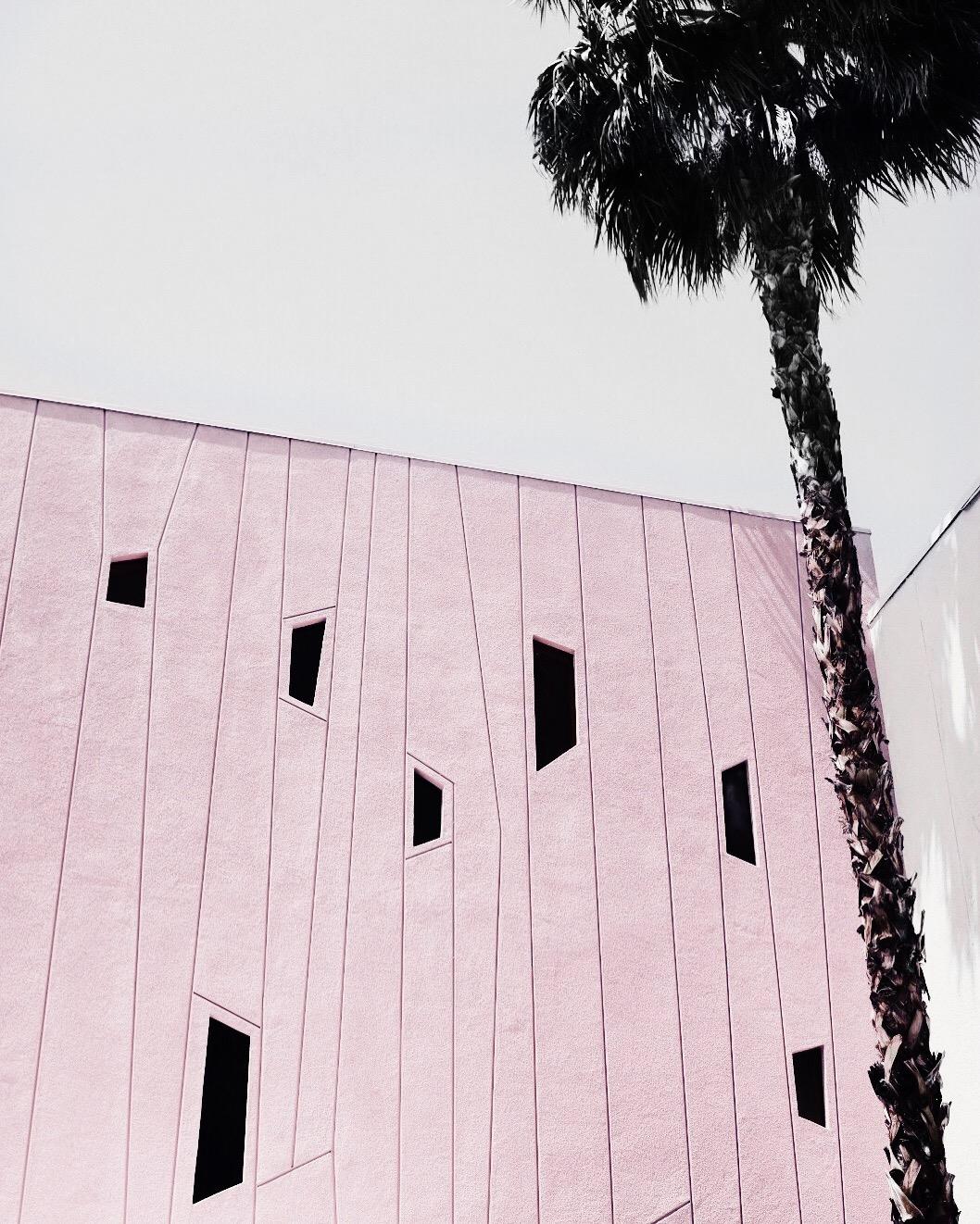 The-Look-Principle-Coachella-Looks-And-Tips-SaguaroHotel.jpg