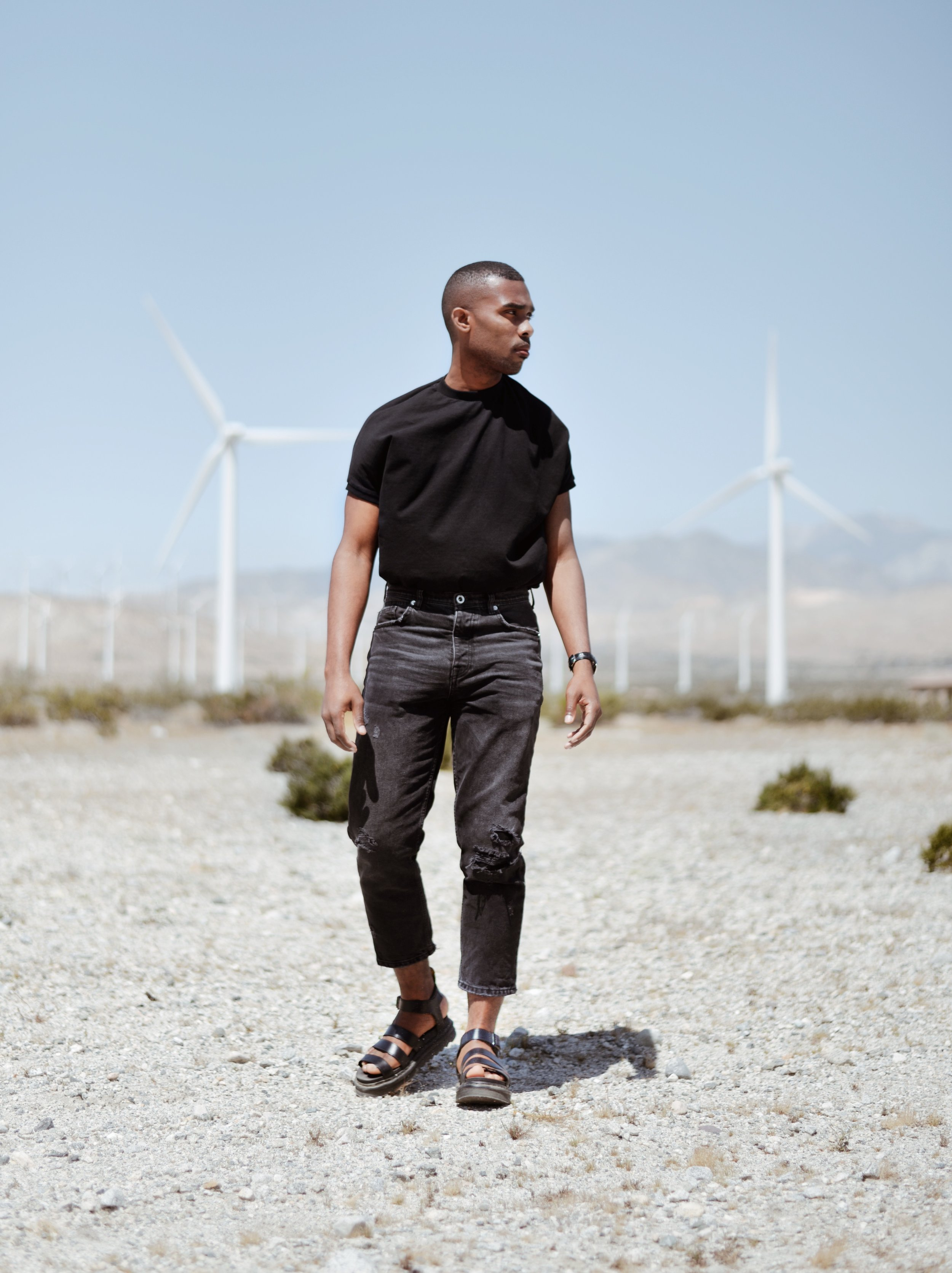 The-Look-Principle-Coachella-Looks-And-Tips-Palm-Springs-Windmill-Tours.jpg