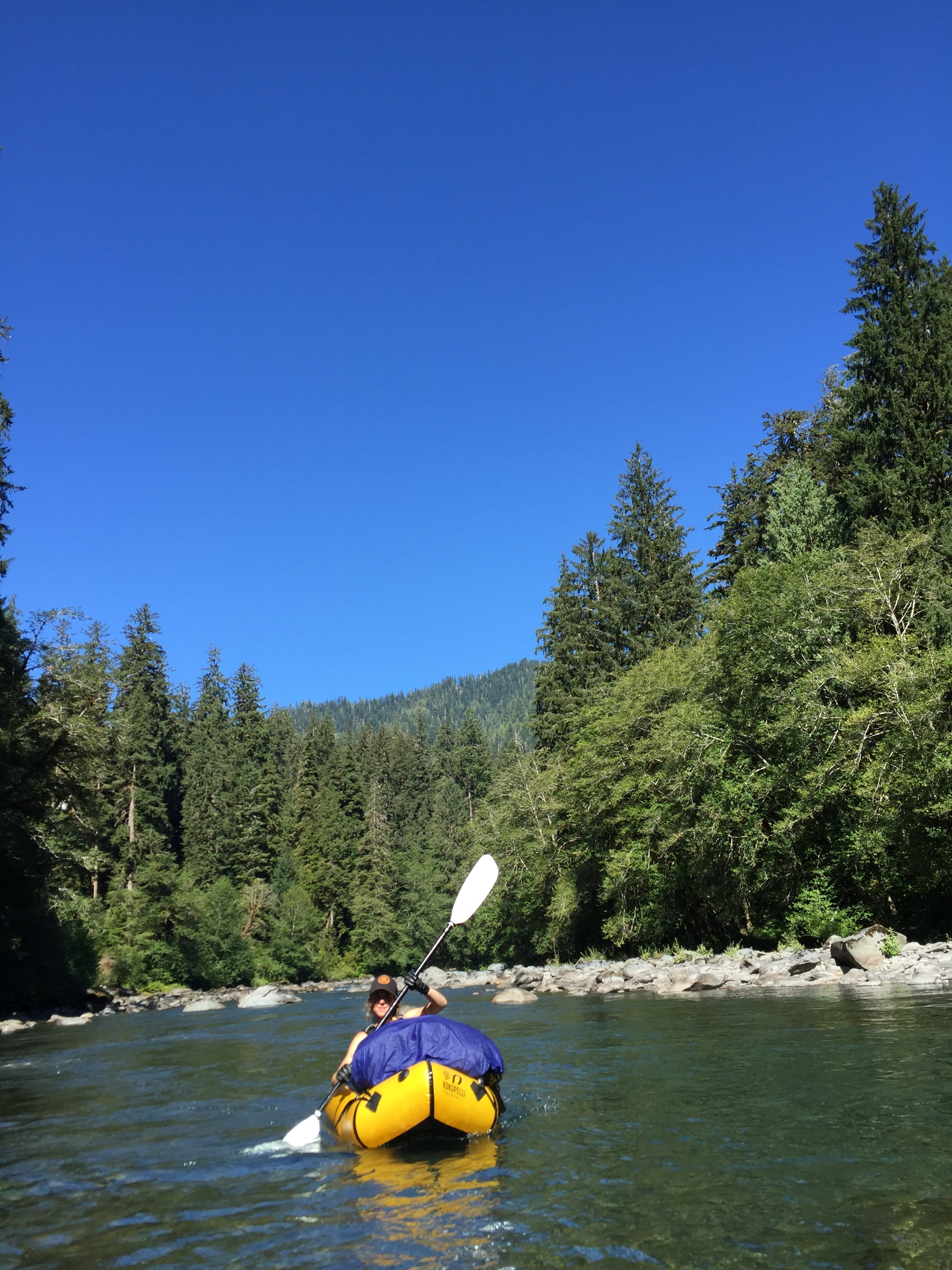 Queets River, Olympic National Park.