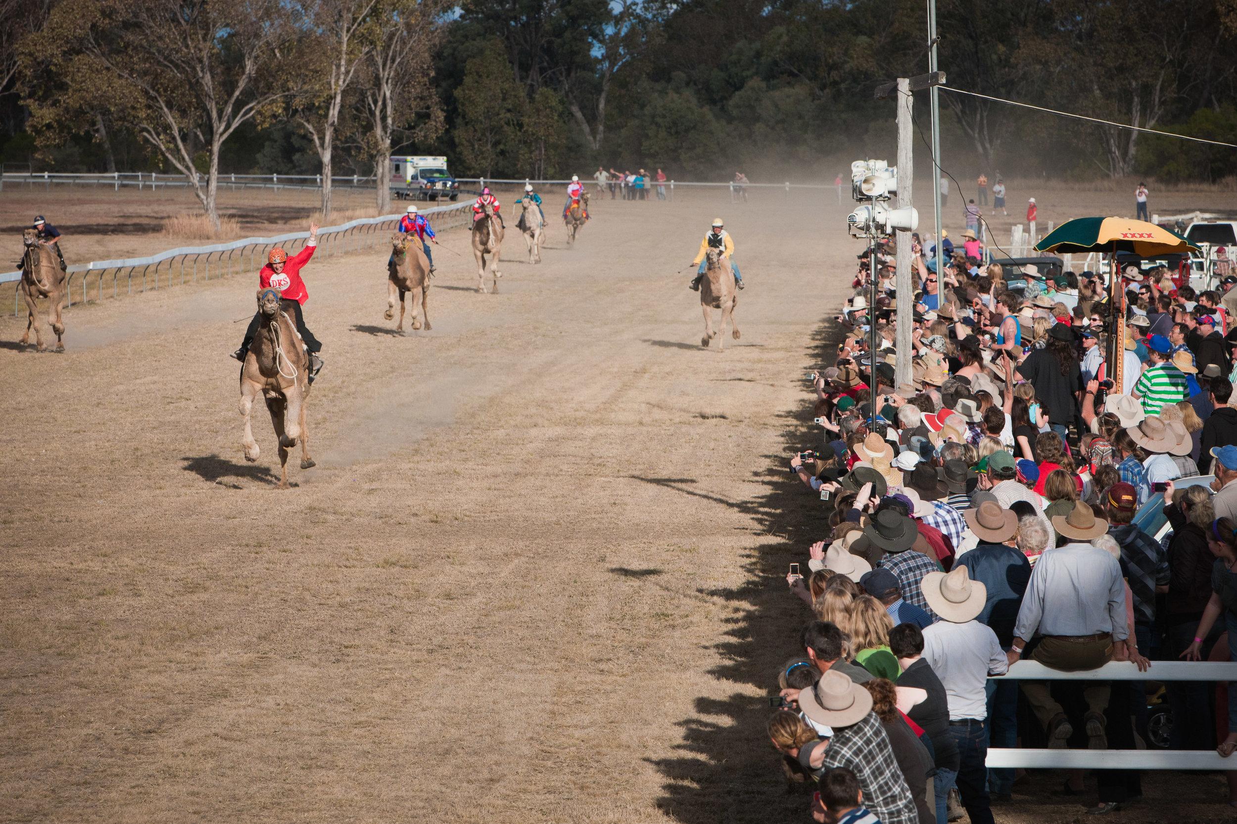 Tara Festival of Camels and Culture.jpg