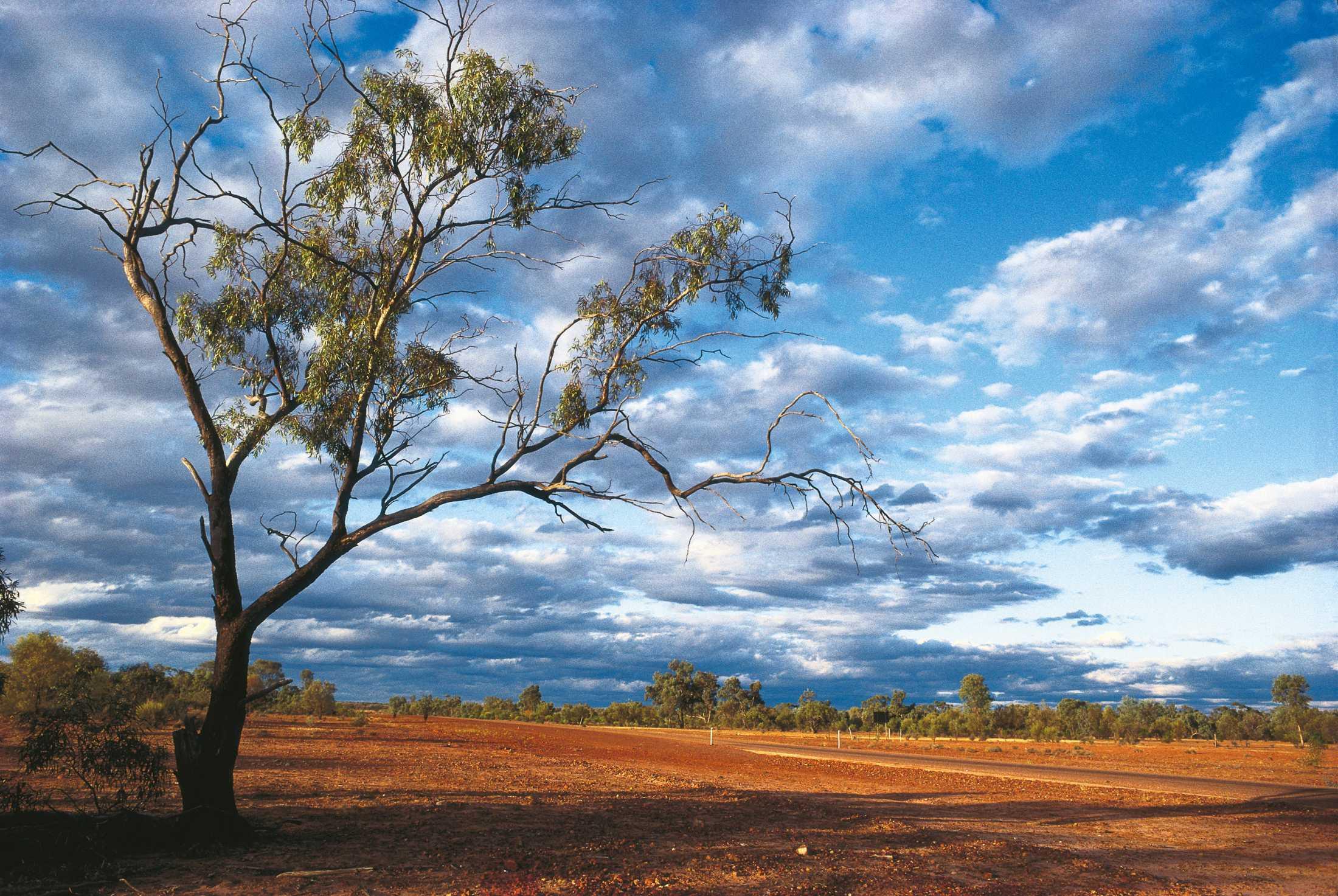 Cunnamulla-Outback-track-Medium-Res.jpg