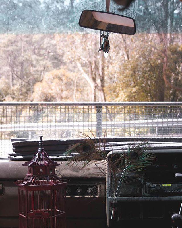 Home on the road 🖤🚎 Taken at Kunanyi - aka Mt Wellington - in Tasmania.  #bushome #vanlifeideas #vanlifestyle #vanlifeexplorers  #vanlifedistrict #itsvanlife #rvlife #homeonwheels #homeontheroad #homeiswhereyouparkit #busliving #vanlifejournal #campvibes #adventuremobile #glamping #campervanlife #magdathemagicbus #magicbus #buslife #vanlife #vanlifers #vanlifediaries #itsvanlife #vanlifedistrict #vanlifeideas #vanlifedreams #vanlifeoz #mobilestudio #vanlifeinspiration