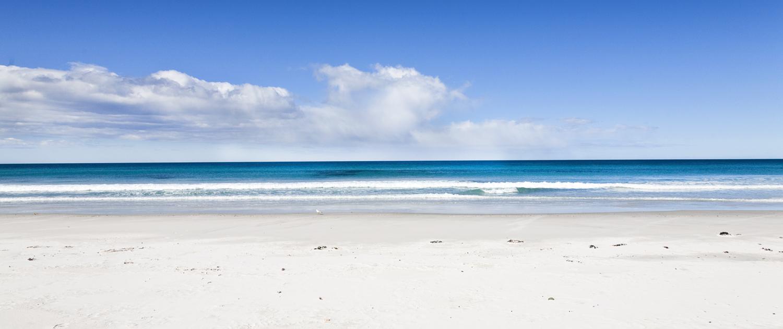 GREAT OYSTER BAY / TASMANIA