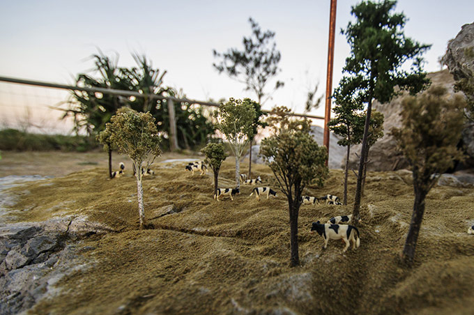 City Farming - Karl de Waal