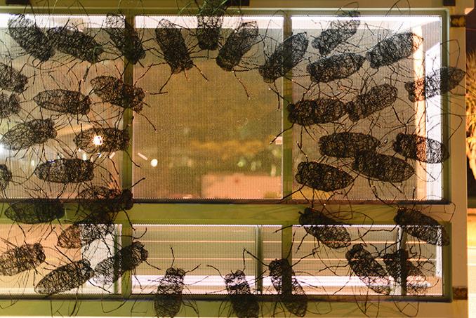 Andrew Cullen Swarm