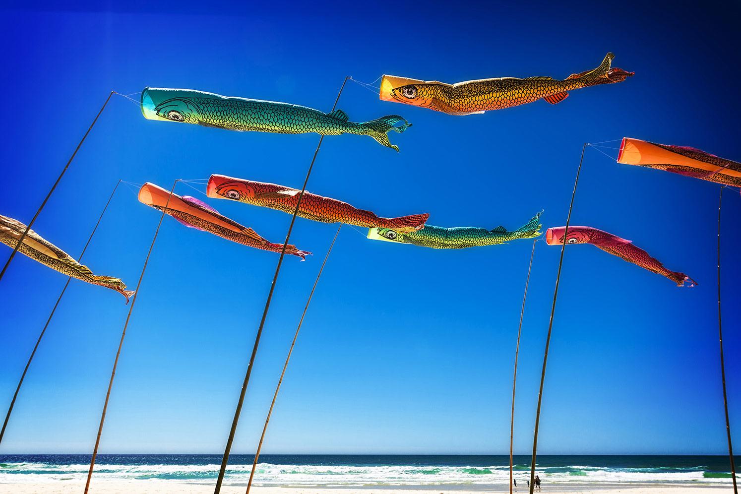 Anne Leon Fabulous Flying Fish