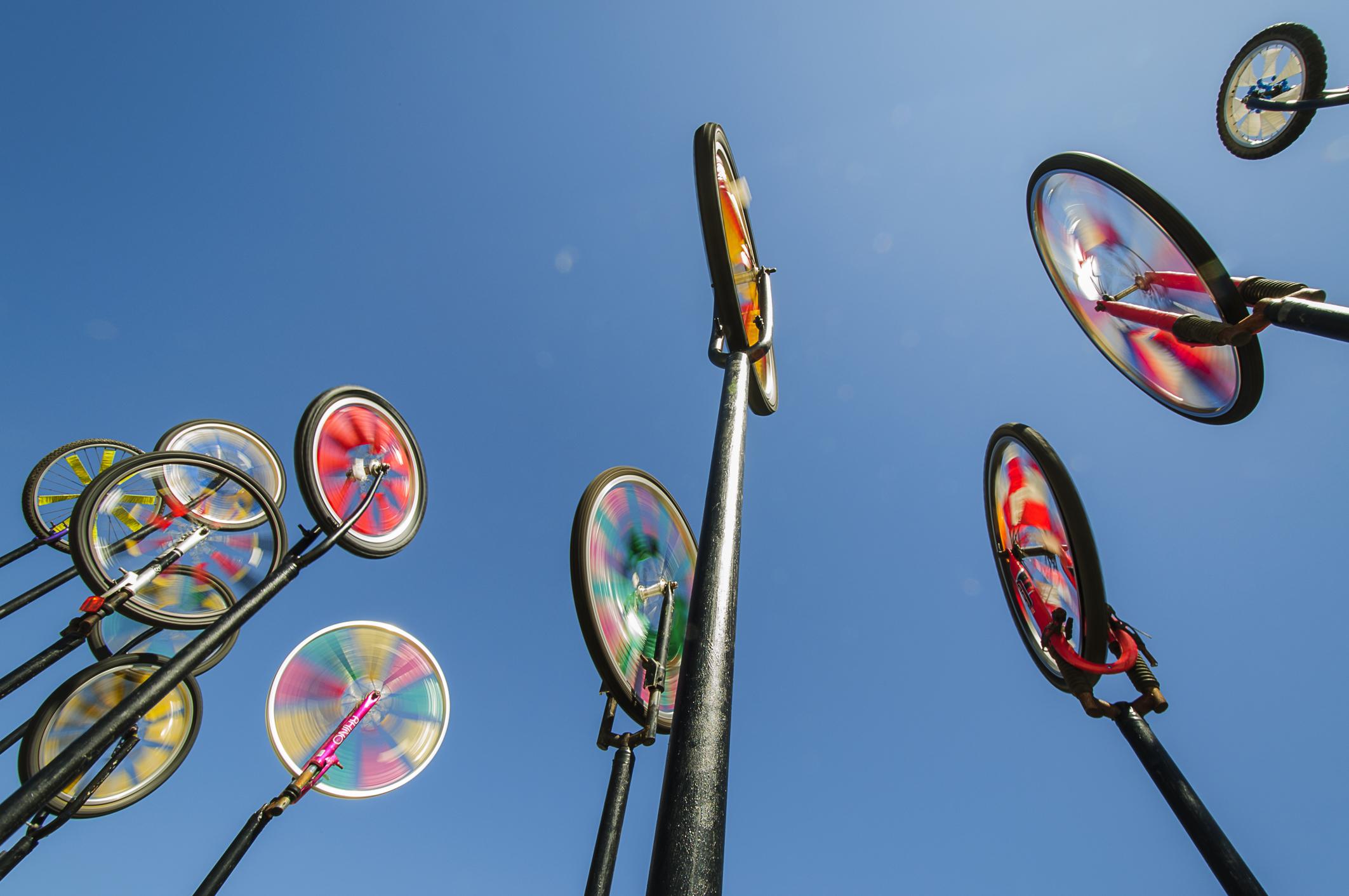 Ged McCormick Wheelie Windy Rowly Emmett Photography