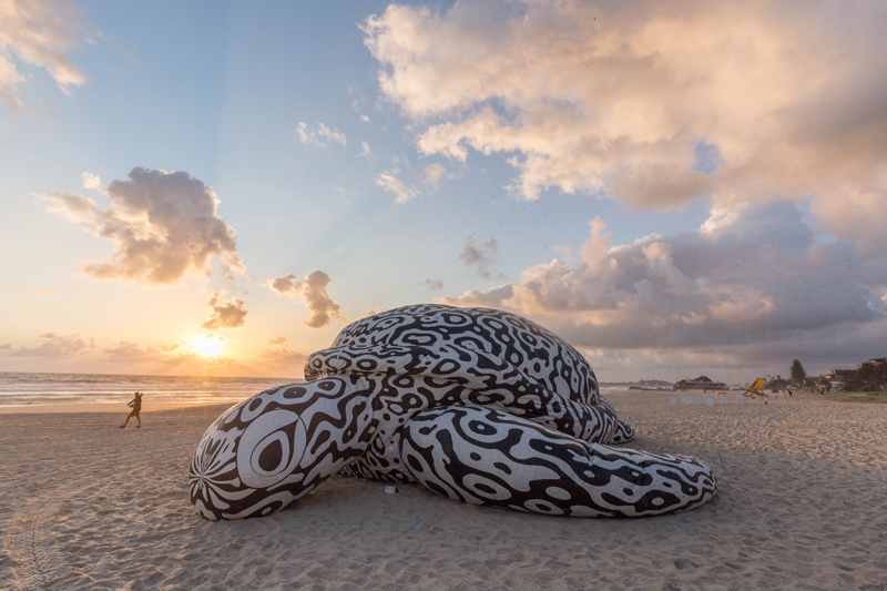 BJ Price The Alpha Turtle 2016 Photography Christian Bowman