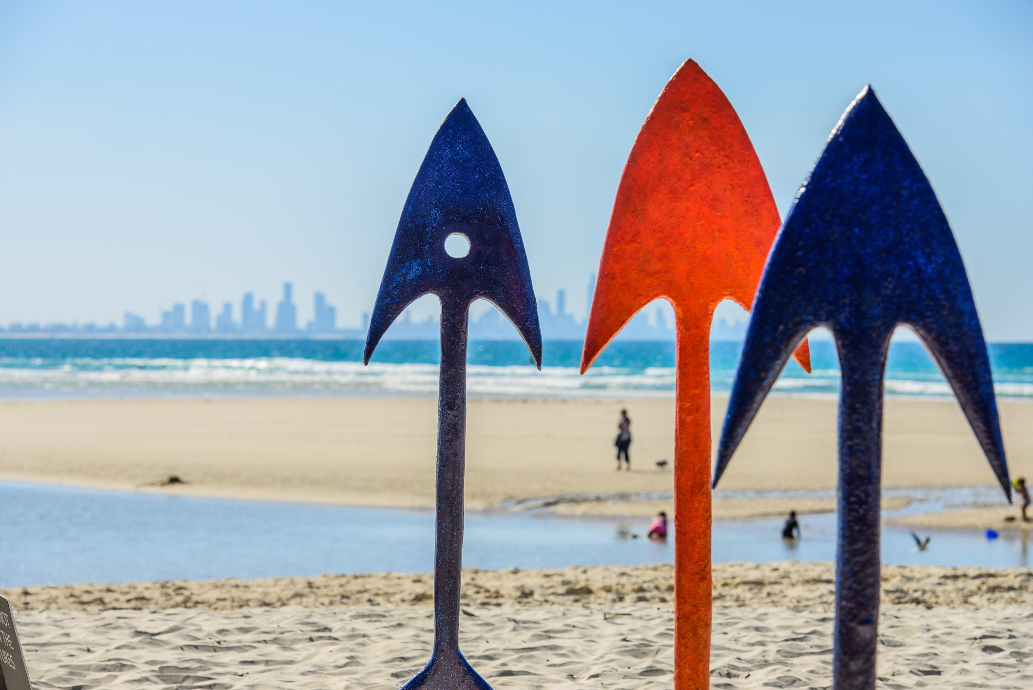 SURF WARRIORS     ALISON ALLCOCK     NSW
