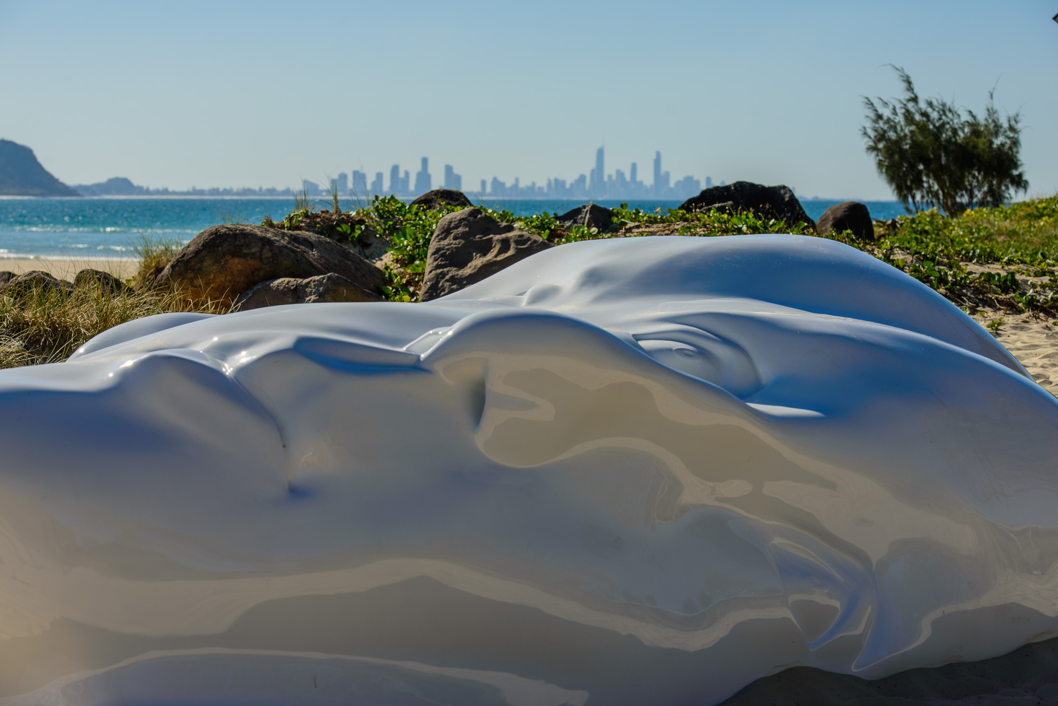 LITTORAL ZONE - THE BEGINNING     SONIA PAYES     VIC