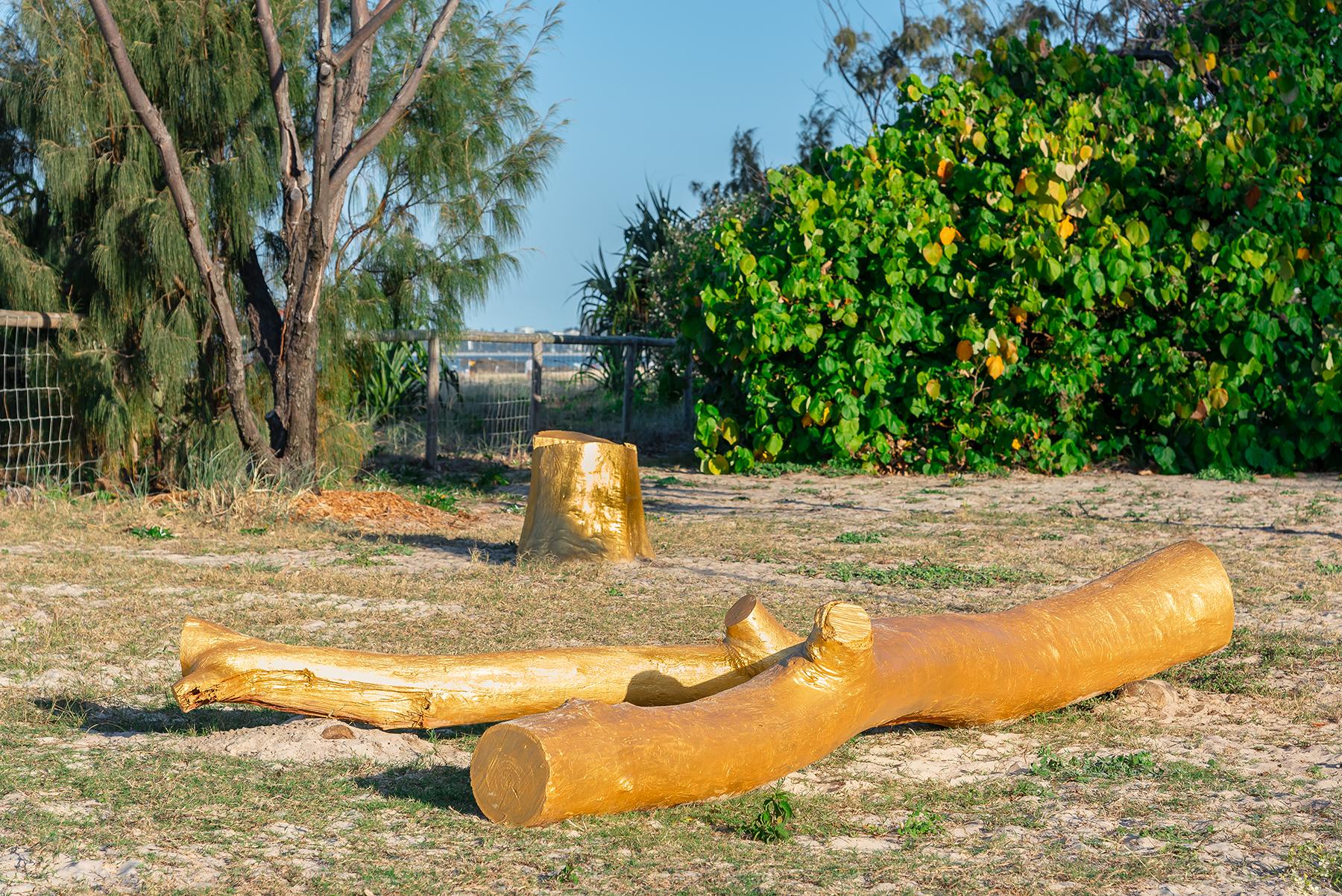 Karl Chilcott   Ngara Tree   Photography PBR Images