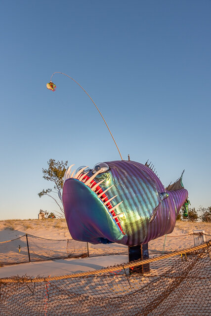 15  Brian Bertram & Tim Rose   Guppy the Anglerfish    Photography   PBR Images