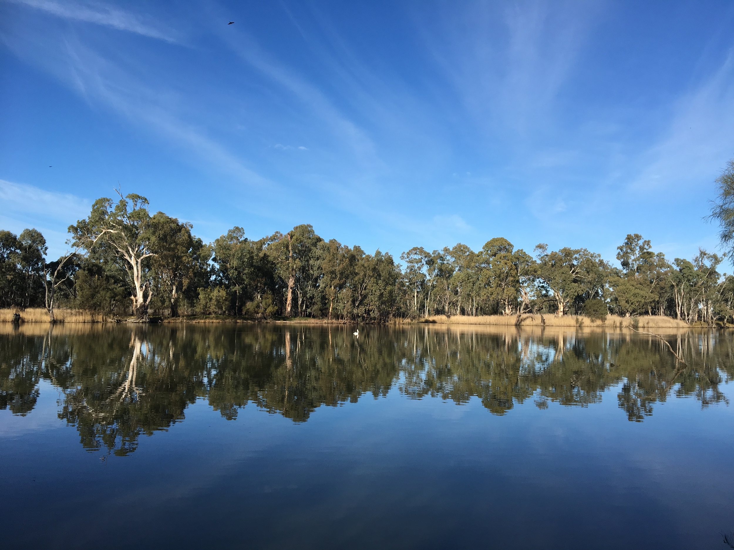 Trentham Estate Winery & Local Wetland Tour