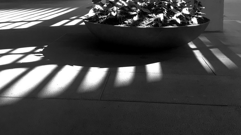 light-planter-box-troika-ws-img_3387.jpg