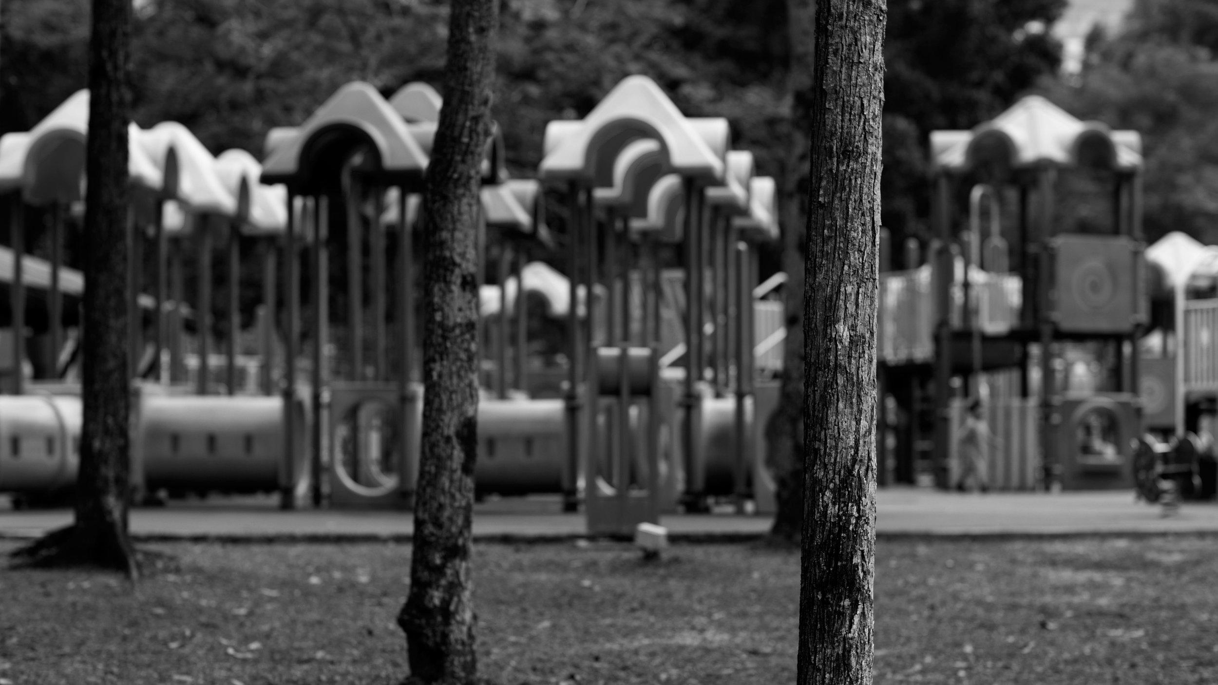 playground-trees-equipment-ws-msl_8717.jpg