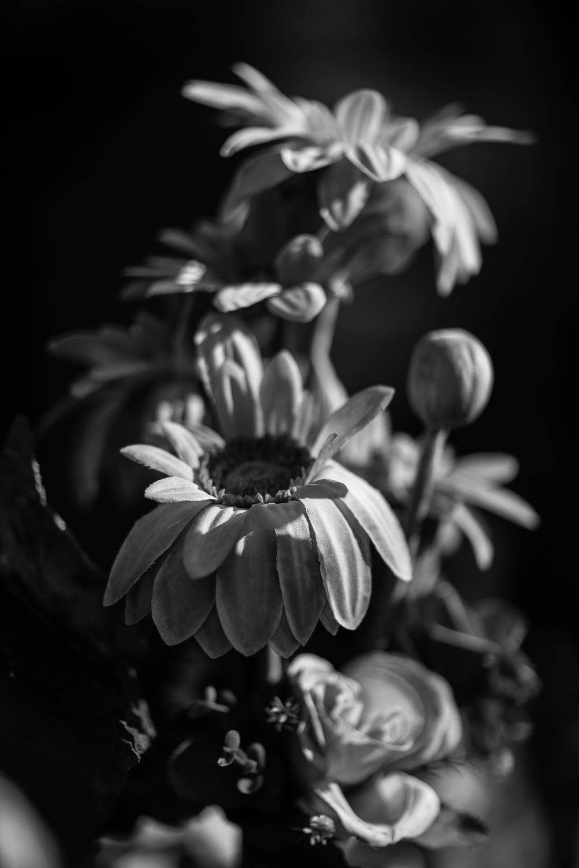 flower-arrangement-offering-luang-prabang-tahnia-roberts.jpg