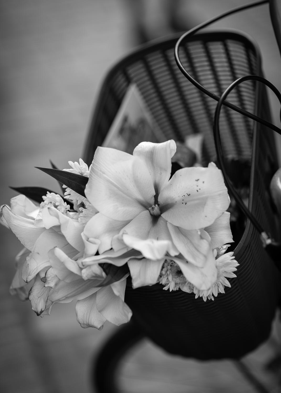 basket-flowers-luang-prabang-tahnia-roberts.jpg