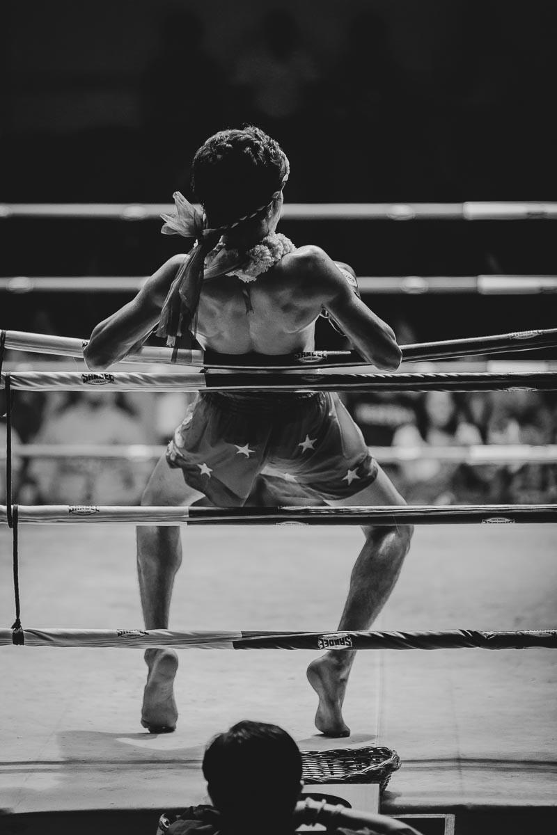 fight-night.jpg
