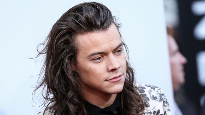 Harry Styles: don't attempt to use him for your gap (yes, I read what I just wrote, and I'm going to leave it right there). Image: Rex/Shutterstock