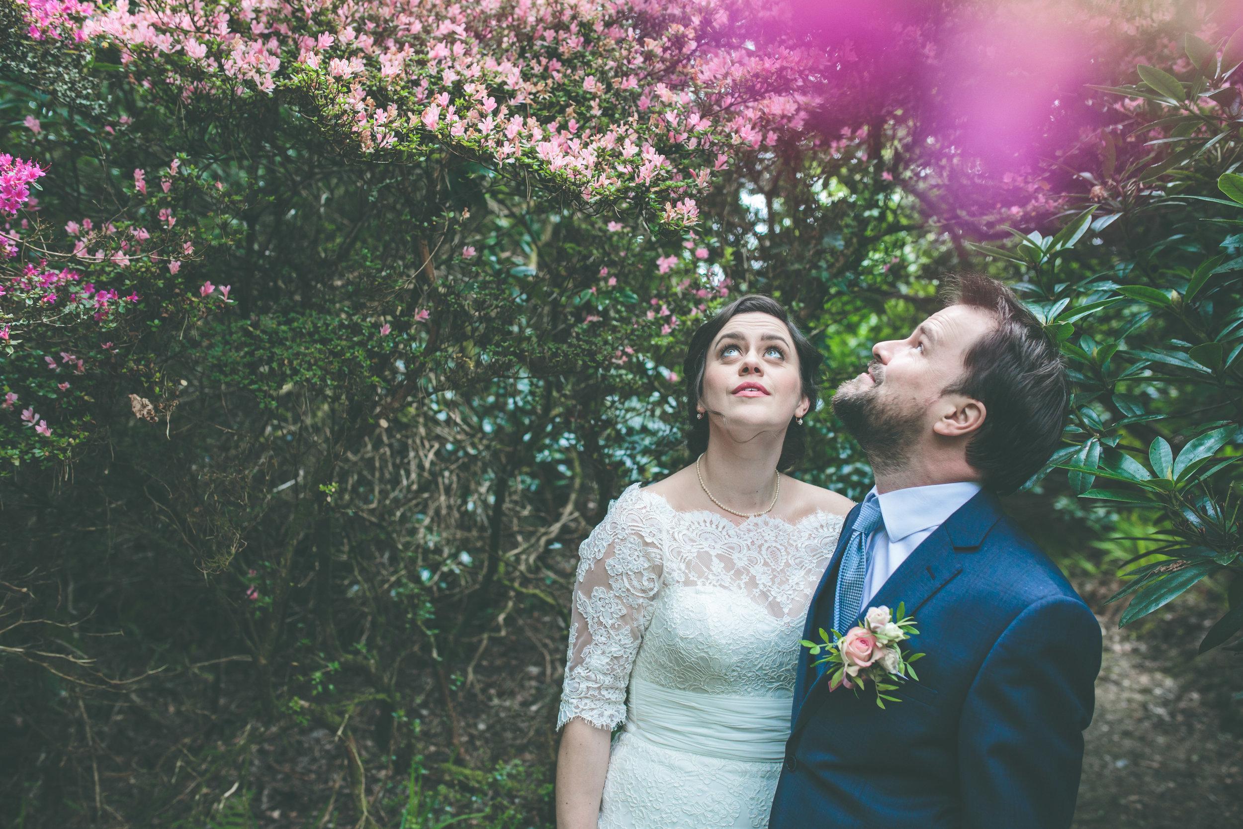 Cashel House Hotel wedding photography