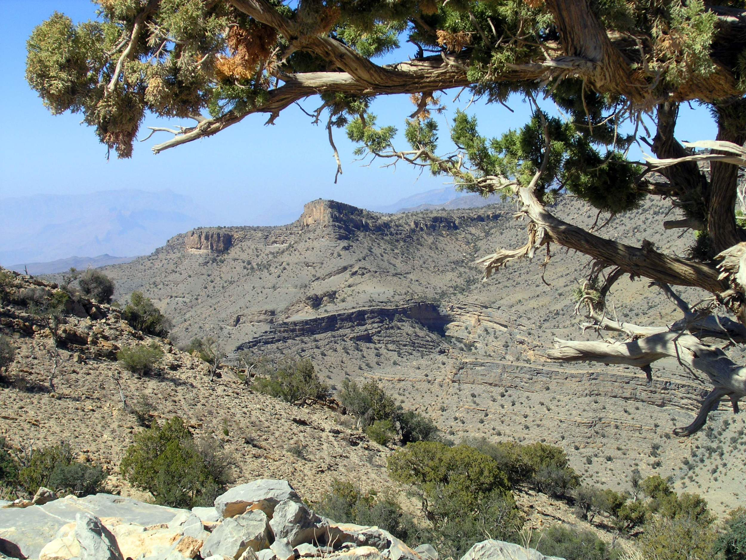 Jebel akhdar.jpg