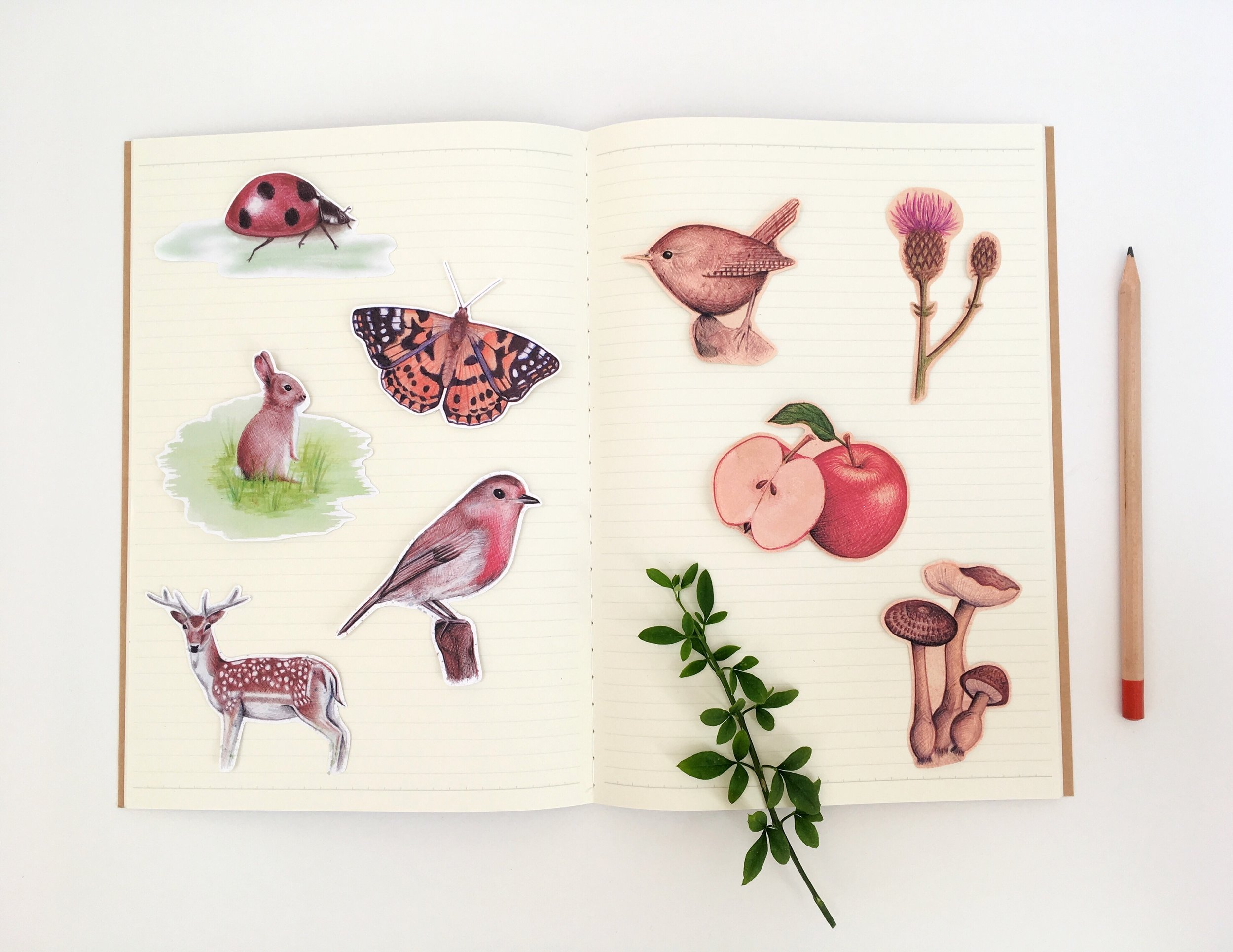 Kerry Dawn Illustration Nature Stickers