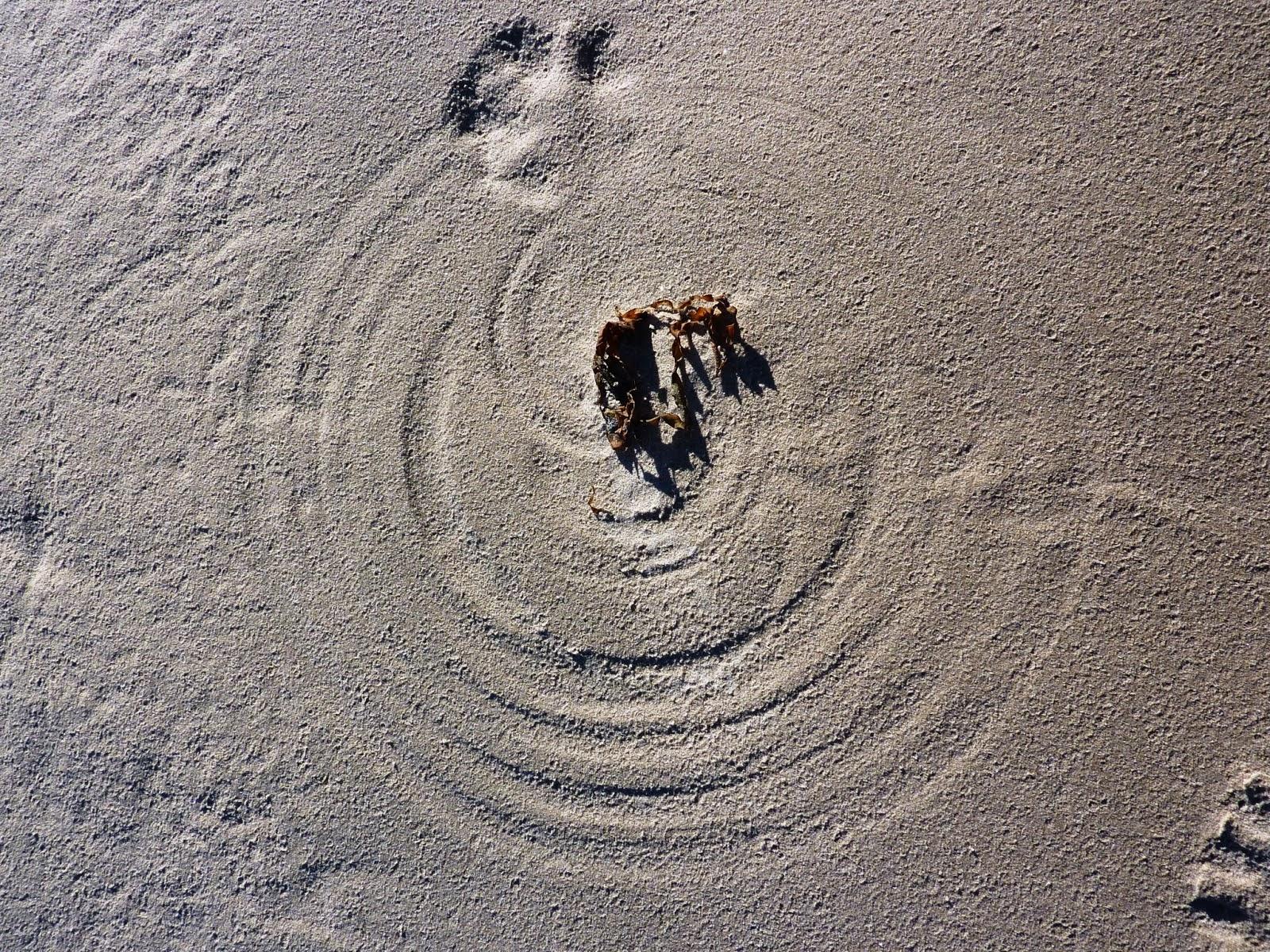 Sand circle.jpg