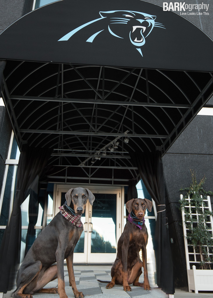 Boston and Griffin outside of the Carolina Panthers stadium.