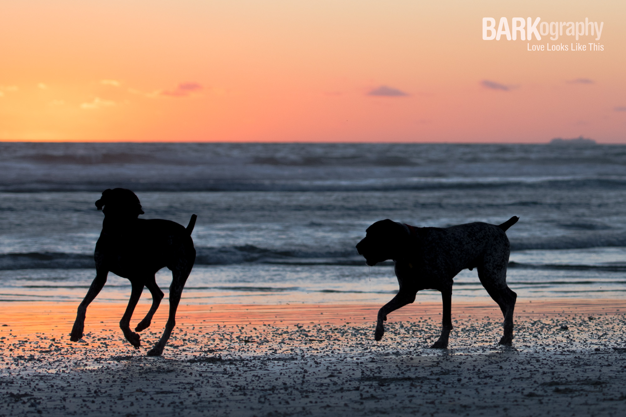 SoCal Sunset Photography.JPG
