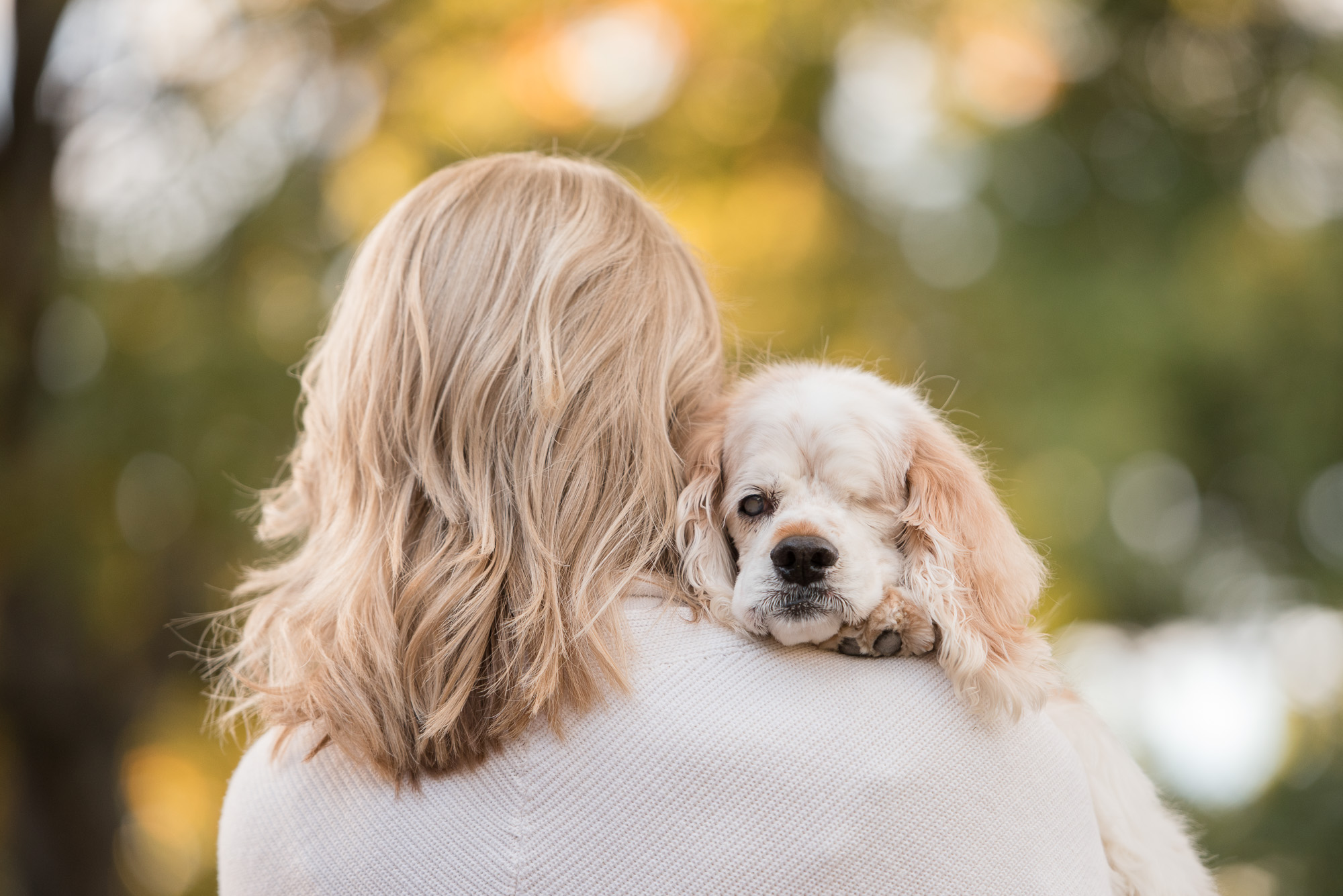 emotion in dog photography
