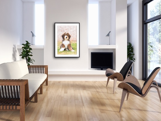 framed print with mat of puppy.JPG