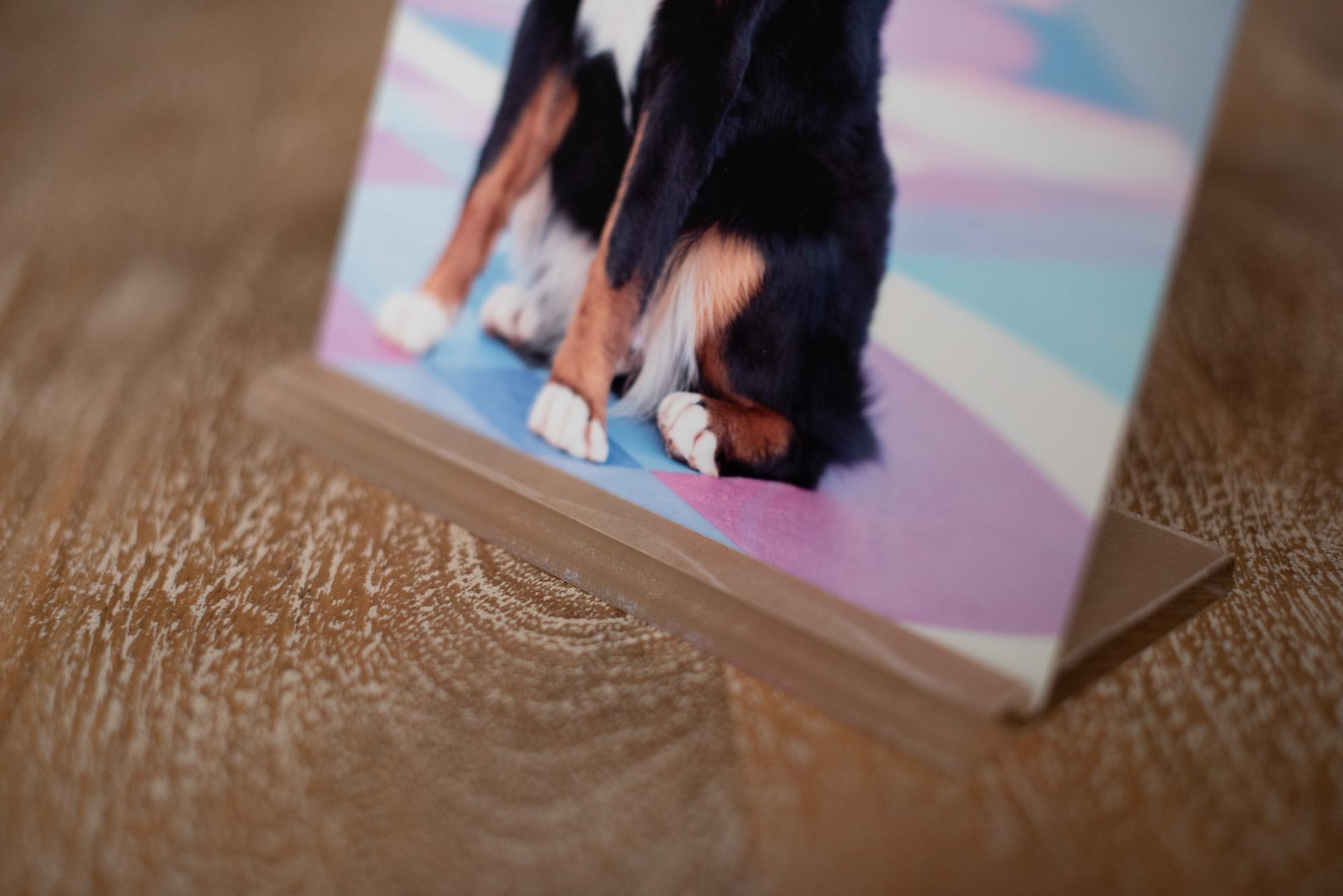 dog photo metal base.JPG