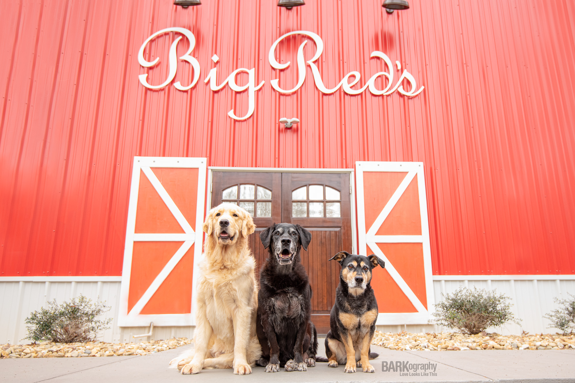 Big Red's by BARKography-2.JPG