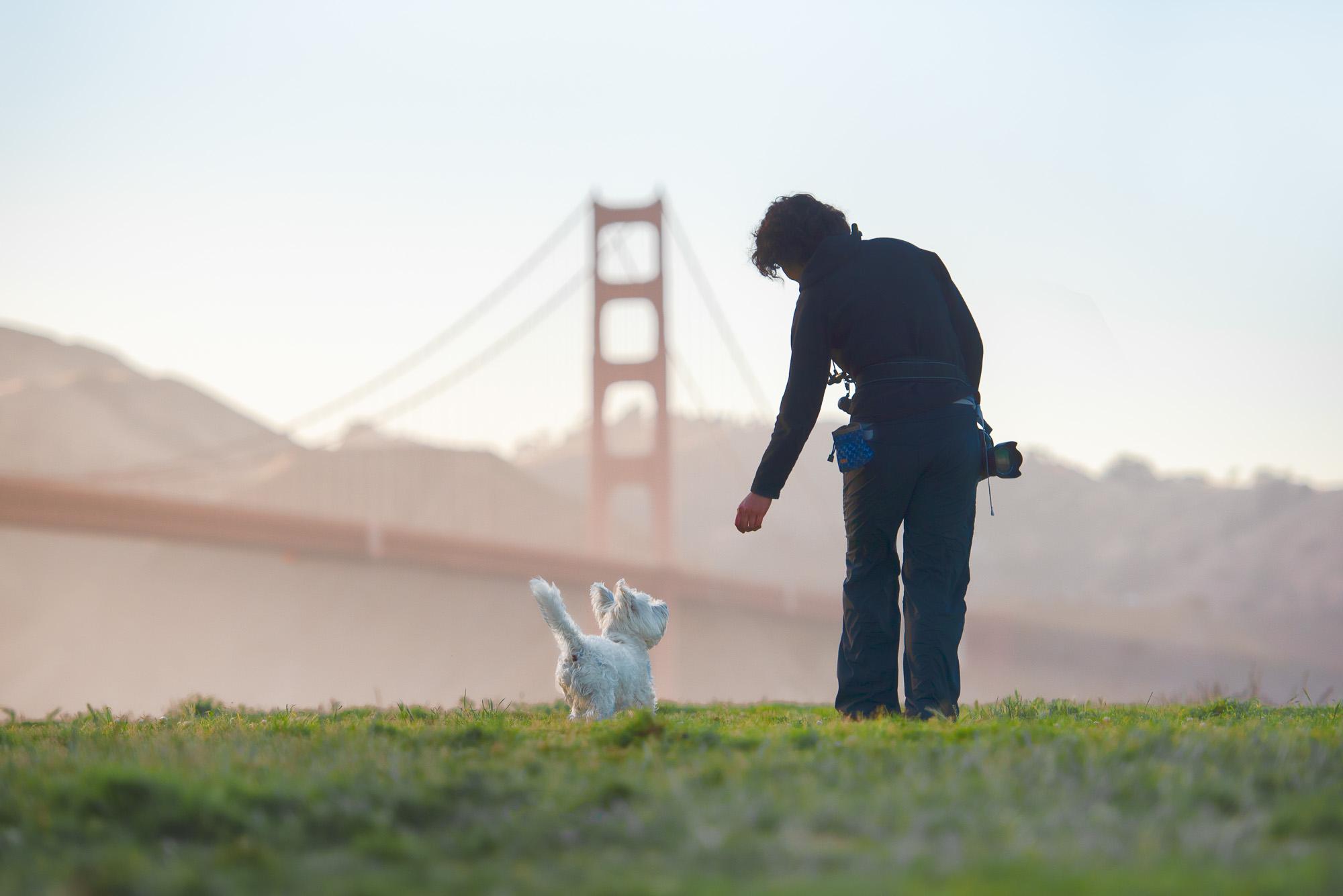San Francisco Golden Gate Bridge dog photographer meet up workshop