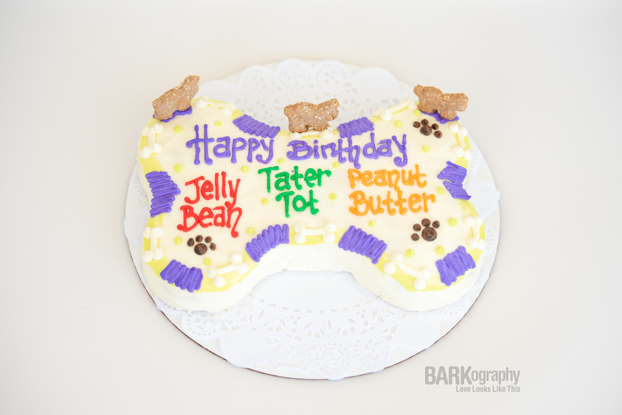 dog birthday cake.JPG