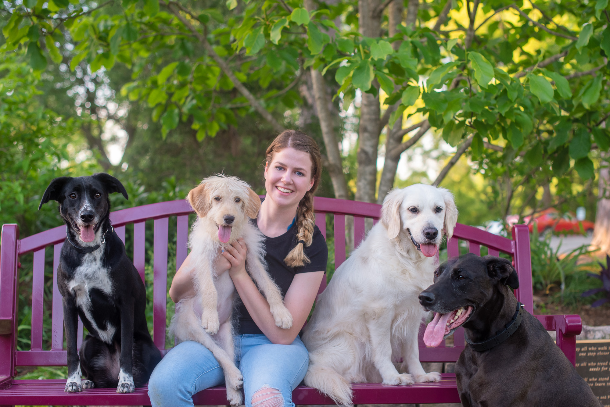 dog mom with 4 dogs