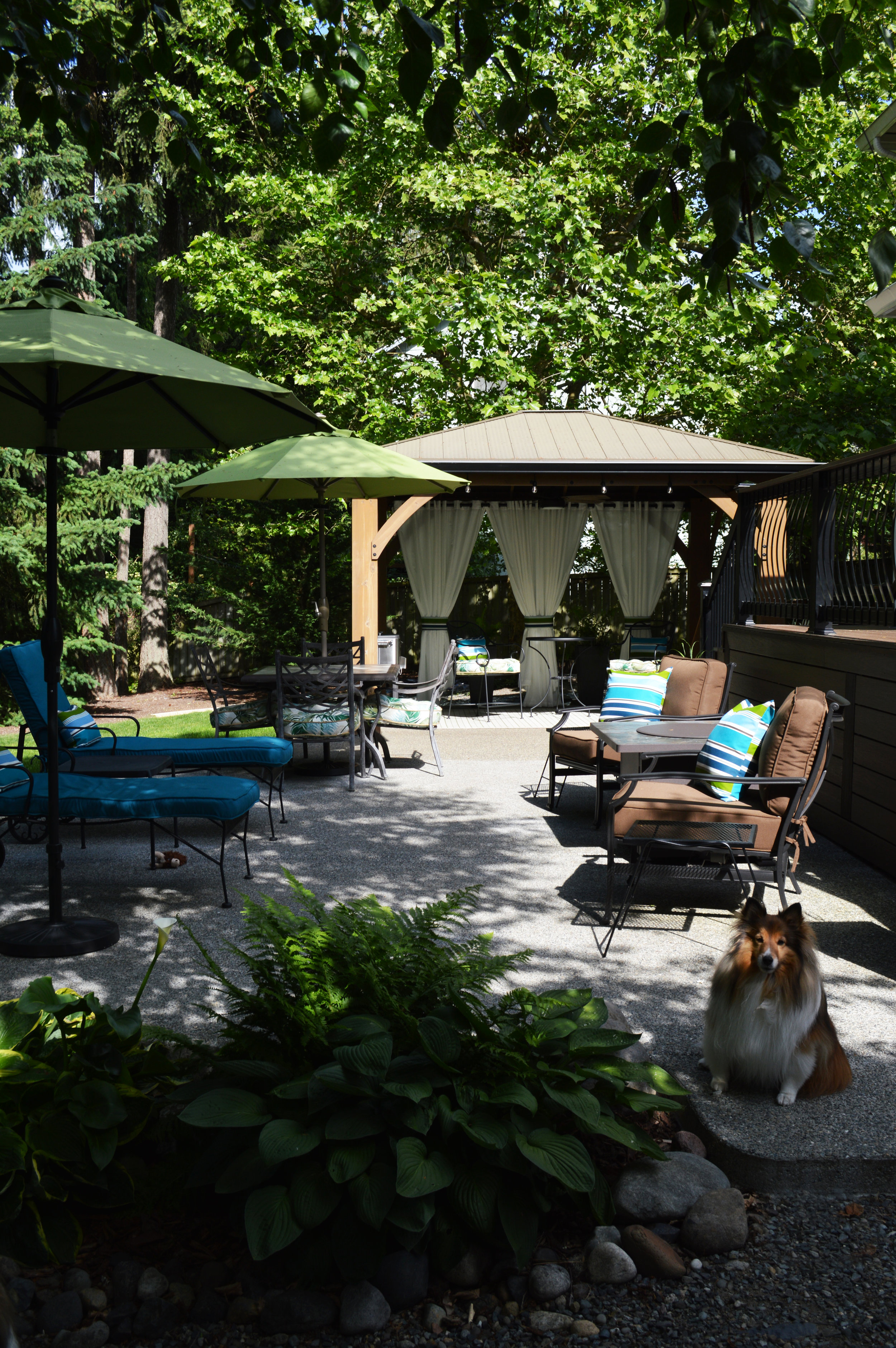 Patio living for man and man's best friends…