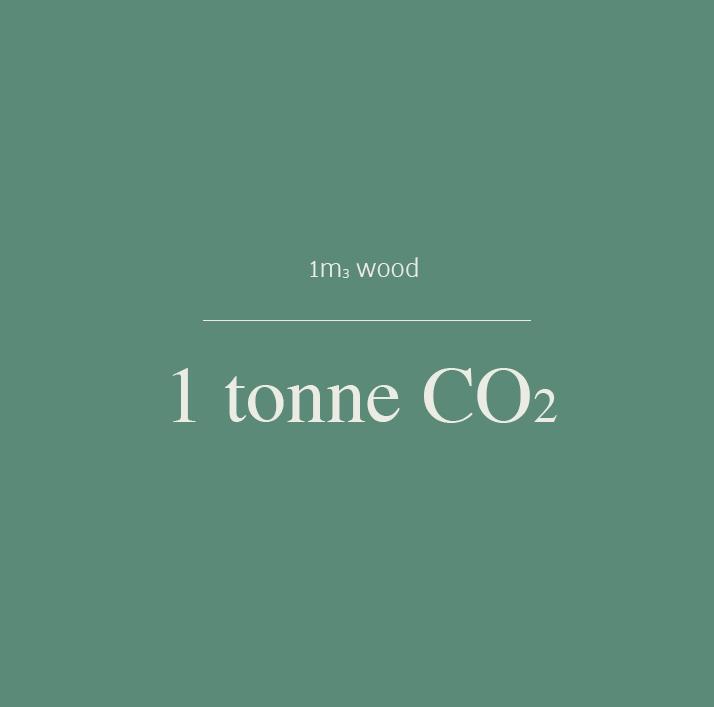 wood equals carbonV3.jpg