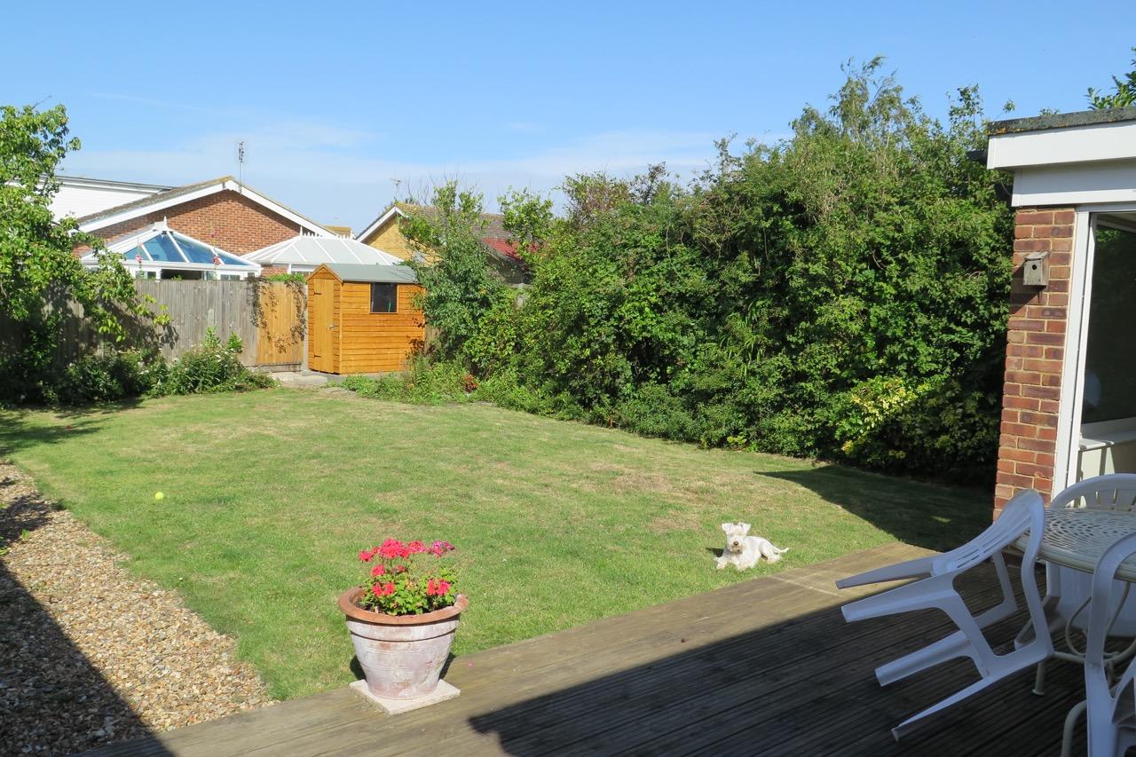 Hodgsons dog in garden.jpg
