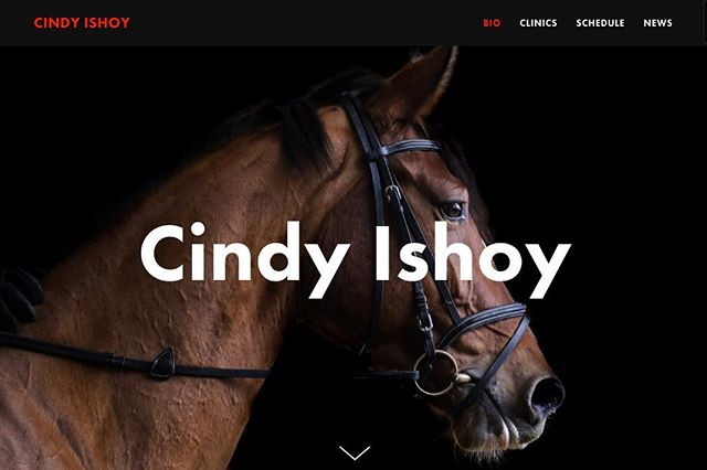 Another week, another exciting web design project for one of Canada's leading equestrians. Cindy Ishoy is Canada's most successful dressage rider and her clinics are in demand throughout North America and Europe.