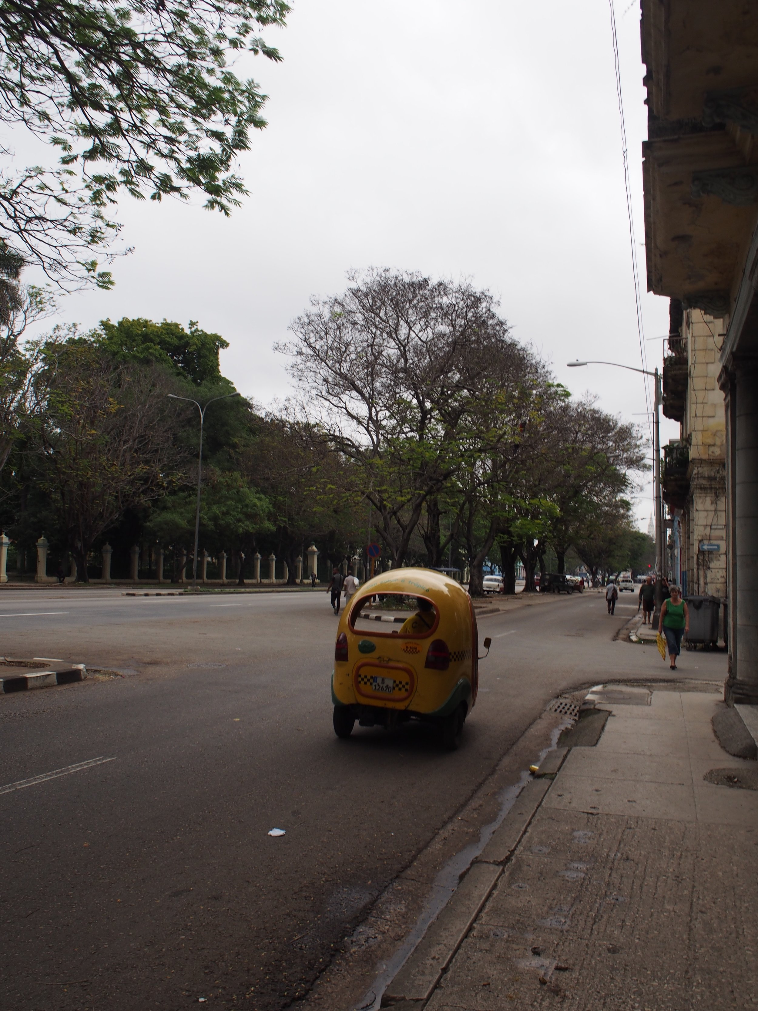Called a 'Coco Taxi', this took us back to our casa from Habana Vieja