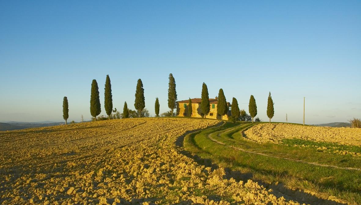 IT_TuscanLandscape_M.jpg