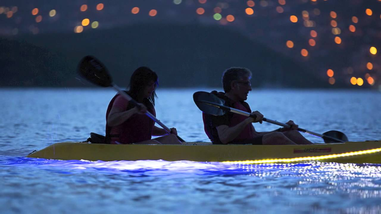 2. Night Kayak Tour