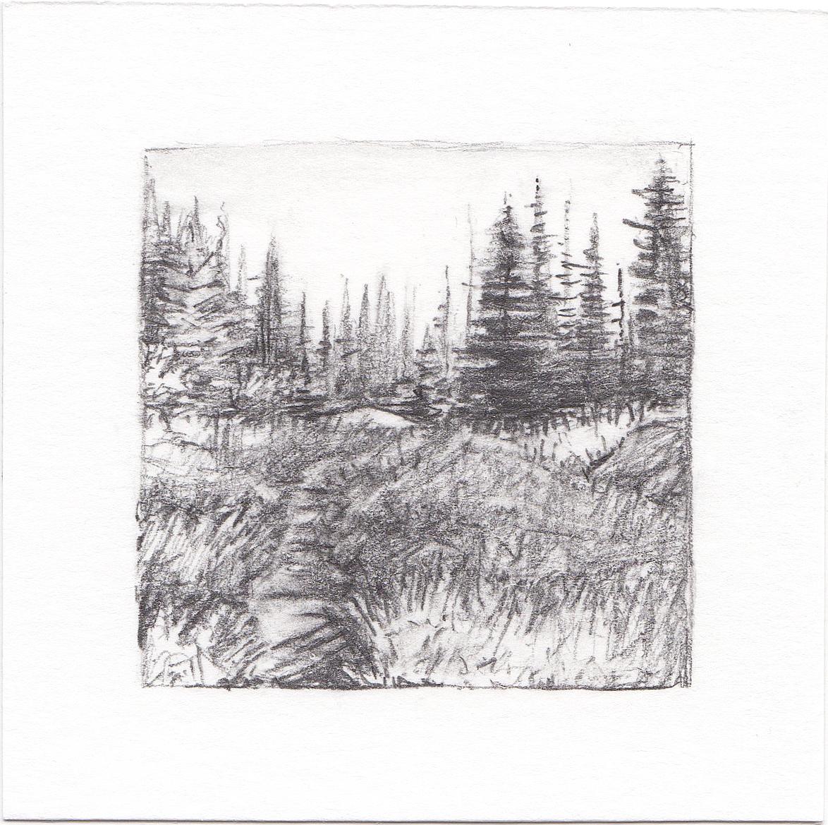 #4 Catherine Pass, Albion Basin, Utah | 3x3 | graphite